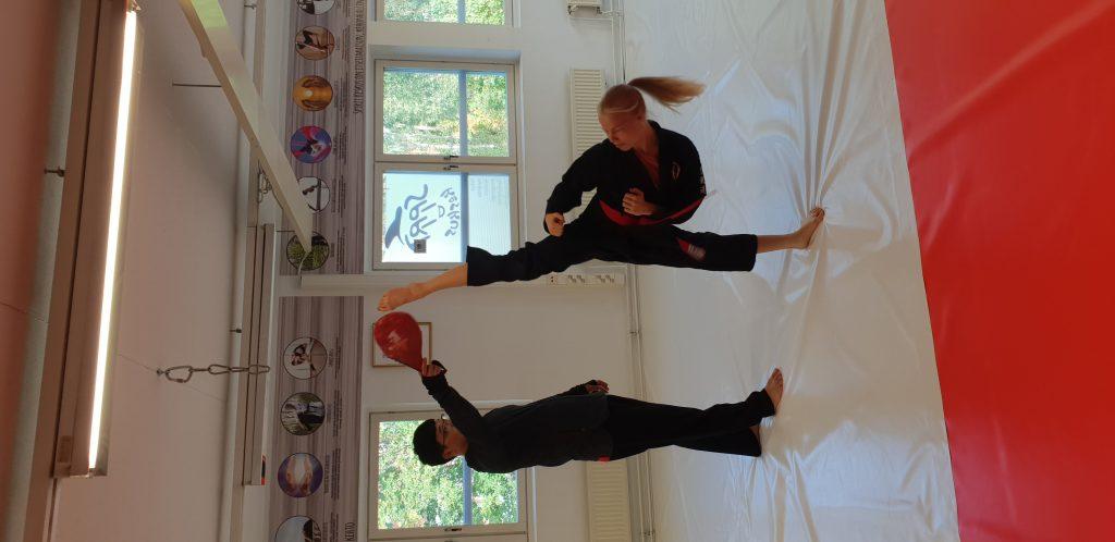 Tiitu high kick hankido